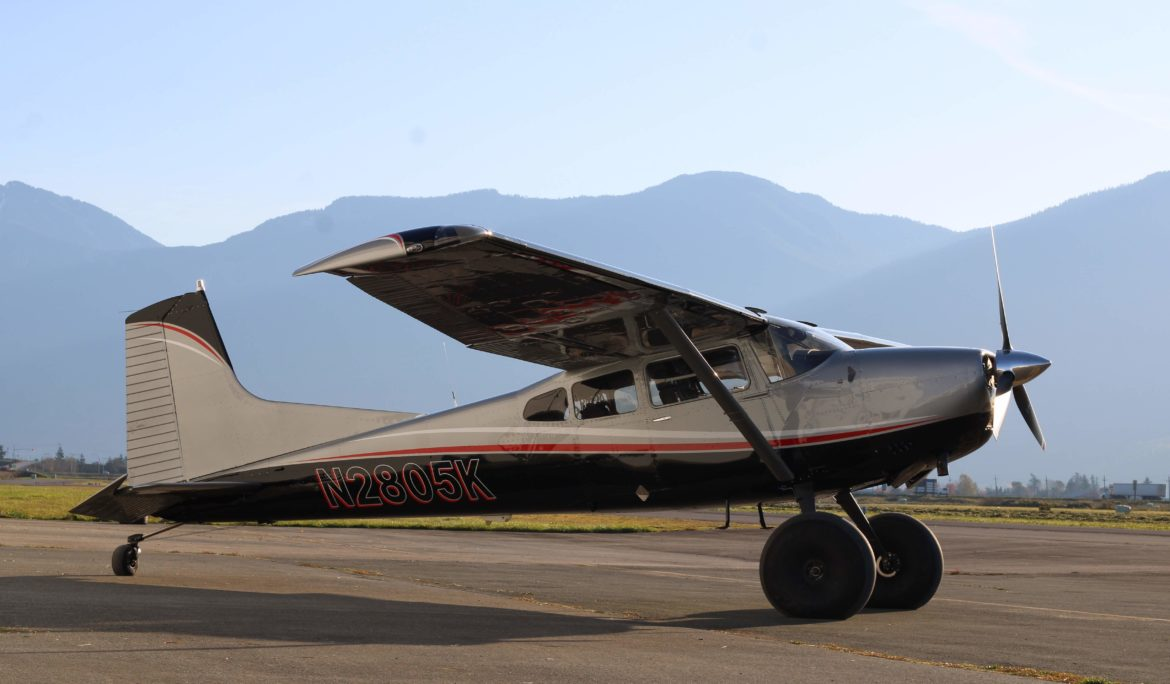 Cessna 180 Paint and Repairs